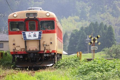 31_DPP_00005996.JPG